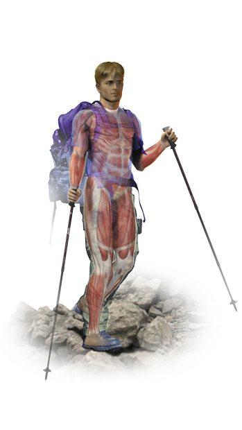 Ilustração do corpo humano