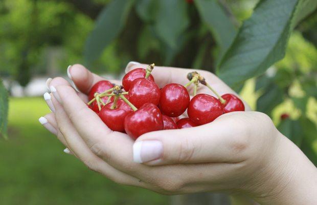 Os 10 alimentos campeões em antioxidantes
