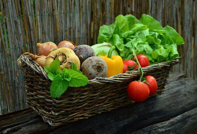 Vegetarianos: dá para ter resultados nos treinos?