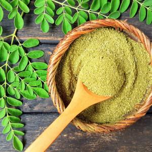 Moringa: conheça 12 benefícios do pó meganutritivo
